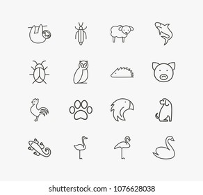 Animal icon set and dog with flamingo, sloth and swan. Insect related animal icon vector for web UI logo design.