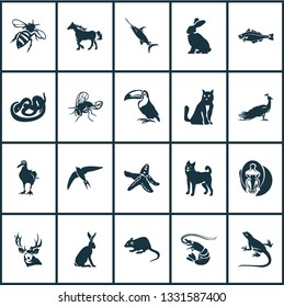 Animal icons set with swift, albatross, lizard and other tropical bird elements. Isolated vector illustration animal icons.