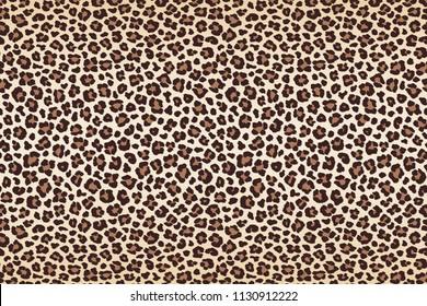 Animal leopard spots fur, horizontal texture. Vector