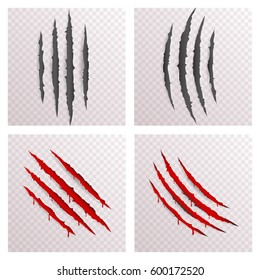 Animal Monster Claws Blood Scratches Torn Bleeding Material Template Set Transparent Background Mock Up Design Vector Illustration