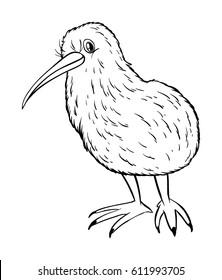 Animal outline for kiwi bird illustration