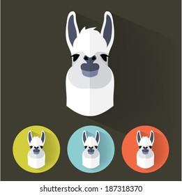 Animal Portrait with Flat Design / Llama / Vector Illustration