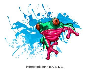 animal Red frog vector illustration