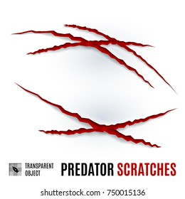 Animal Red Scratches on White background. Claw Scratch Mark. Paper Claws Animal Scratching. Animal Predator Paw Claw, Knife Scratch Trace. Horror Slash Trace