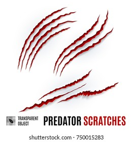 Animal Red Scratches on White background. Claw Scratch Mark. Paper Claws Animal Scratching. Horror Slash Trace