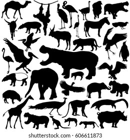 Animal silhouettes set isolated on white background.
