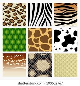 Animal skin.  It is a pattern collection of animal skin. Including fish, snake, deer, tiger, turtle, giraffe, cow, zebra, leopard.