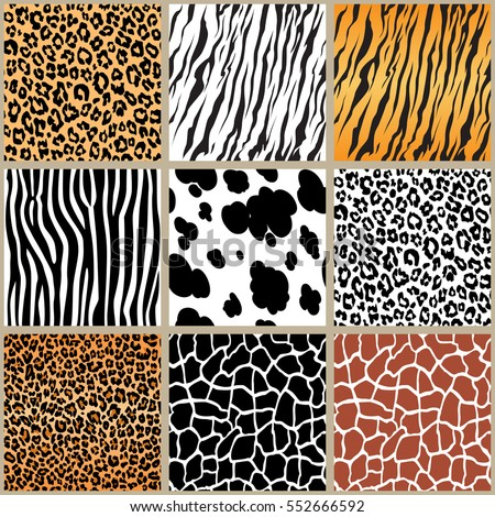 Animal Skin Seamless Pattern Set Vector Stock Vector Royalty Free Mesmerizing Animals With Patterns
