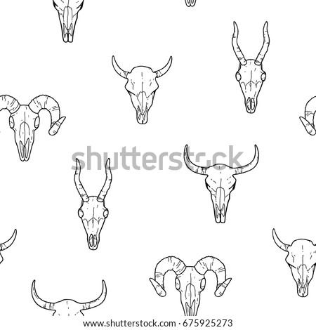 animal skull pattern simple graphic hand stock vector royalty free