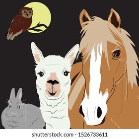 Animal Sleepover Party. Night owl, bunny rabbit, horse, llama
