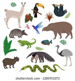 Animal in South America vector wild animalistic mammal character capybara tapir toucan in southern wildlife illustration set of tropical lizard colibri isolated on white background