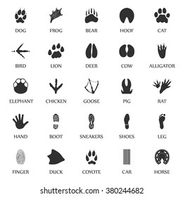 Animal Track Prints Set.