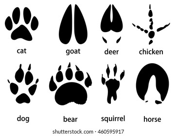 animal tracks vector set