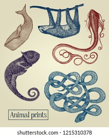 Animal vector illustrations on the vintage paper background