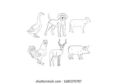 Animal Vector Outline Design Illustration Bundle