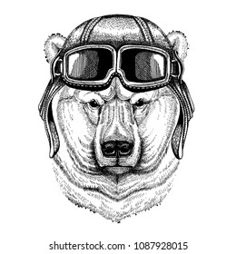 Animal wearing aviator helmet with glasses. Vector picture. Big polar bear, White bear Hand drawn illustration for tattoo, t-shirt, emblem, badge, logo, patch