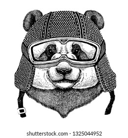 Animal wearing motorycle helmet. Image for kindergarten children clothing, kids. T-shirt, tattoo, emblem, badge, logo patch