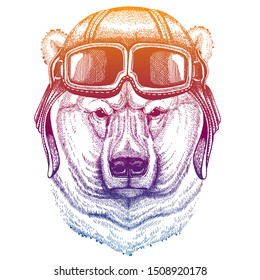 Animal wearing vintage aviator leather helmet. Image in retro style. Flying club or motorcycle biker emblem. Vector illustration, print for tee shirt, badge logo patch