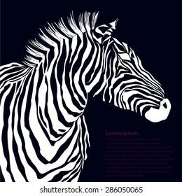 Animal white illustration silhouette zebra. Vector illustration