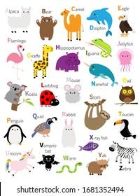 Animal zoo abc alphabet. Cute cartoon set. Baby children education. Alpaca llama bear camel dolphin eagle flamingo giraffe hippopotamus iguana koala sloth unicorn owl penguin bunny. Flat design Vector