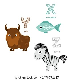 Animal zoo english alphabet X, Y, Z. Letters with x-ray fish, yak and zebra. Wild life mammals. Cartoon style characters for kids education. Vector Eps10 illustration.