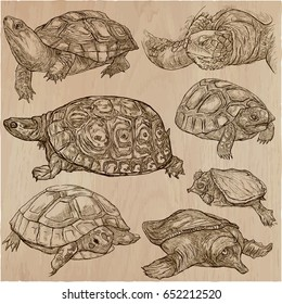 Animals around the World - TURTLES and Tortoises. Collection of an hand drawn vector illustrations. Freehand sketches.Line art.Each drawing comprise of a few layers of outlines.Background is isolated.