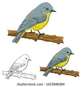 animals, bird silhouette, bird vector.Abstract art bird, Logo birds icon set vector illustration, set birds vector.