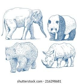 Animals drawings set isolated on white background: elephant, panda, bear, rhino