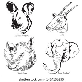 Animals Endangered Species vector Illustration