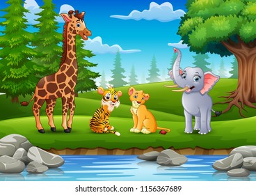 The animals are enjoying nature by the river