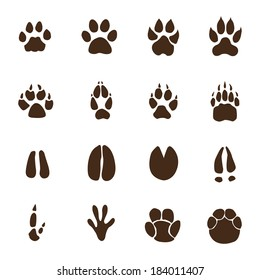 graphic about Printable Animal Footprints called Animal Footprints Shots, Inventory Images Vectors Shutterstock