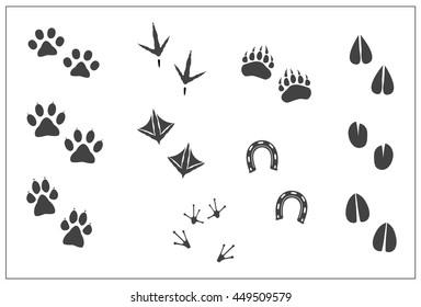 Animals footprints: cat paw, dog paw, bear paw, birds: chicken feet, duck feet; horseshoe, artiodactyls hoofs: deer,antelope,sheep,giraffe,goat, cow,llama, elk; frog feet. Isolated illustration vector