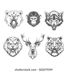 Animals Heads. Line art