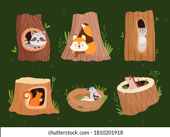 Animals hollow. Wood forest trees with holes for wild animals houses vector cartoon collection