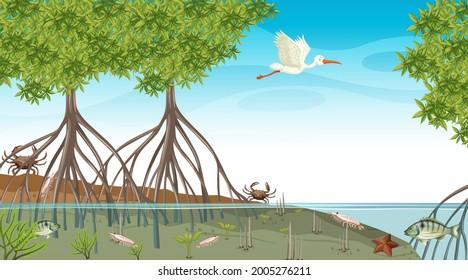 Animals live in Mangrove forest at daytime scene illustration
