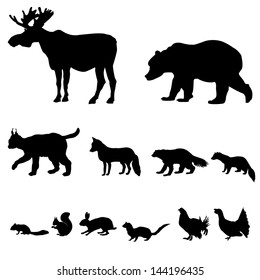 Animals living in taiga. Vector set of silhouette isolated on white background.