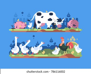 Animals on farm. Cow and pig, goose and chicken. Vector illustration