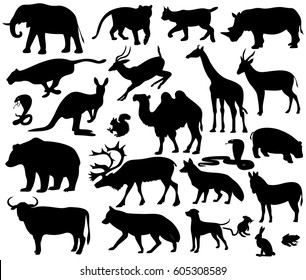 animals on a white background,vector illustration