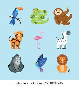 animals parrot sloth snake lion