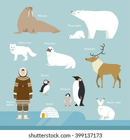 Animals and people living in the Arctic