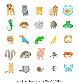 Animals pets vector flat colorful icons set. Cartoon illustrations of various domestic mammals, rodents, amphibian, insects, birds, reptiles. Logo, pictogram, infographic elements