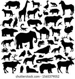 Animals Silhouette Big Set Icons