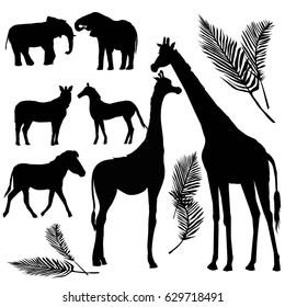 animals silhouette, giraffe, Zebra, elephant, vector, illustration