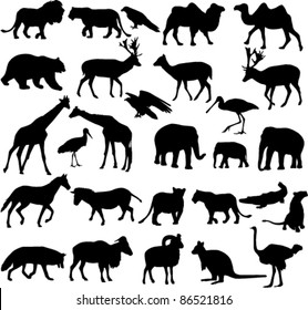 animals silhouettes collection