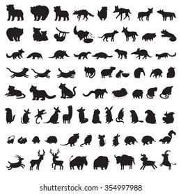 Animals silhouettes vector. Mammals of the world. Extra big set of animals gray contour. Vector illustration, isolated on a white background