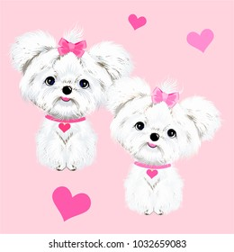 animals sit two white dogs Maltese dogs with pink bows and hearts vector background
