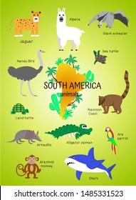 Animals South America. poster for children, preschoolers, kindergartens, kindergartens. Alpaca, anteater, armadillo, coati, parrot, monkey, shark, ostrich nandu, alligator, turtle