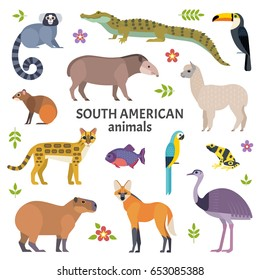 Animals of South America. Vector illustration of exotic animals, such as cayman, tapir, capybara, ocelot, alpaca, piranha, toucan and ara. Isolated on white.