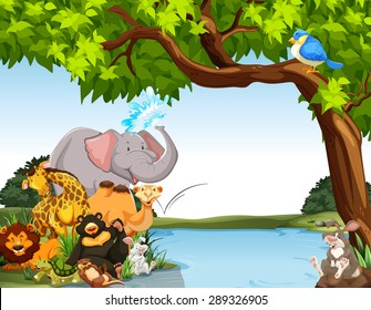 Animals together by the river bank
