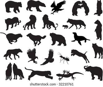 Animals vector vol_6